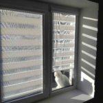 зебра шторы в майрамадаге